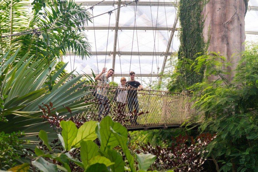 Peter-A.-Silbermann-Schule - Leistungskurs Bio - Zoo Leipzig - Tropenhaus